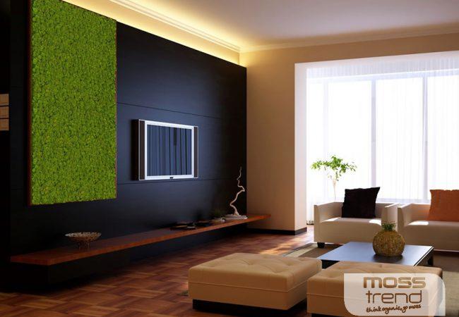 Un tocco di green in casa arreda creando for Green arreda
